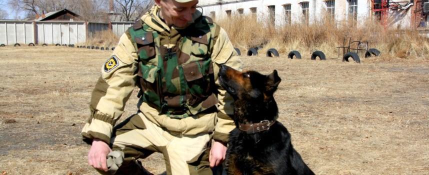 Уход за служебной собакой