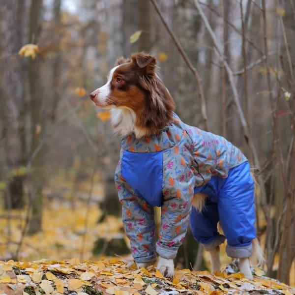 дождевики для собак средних пород
